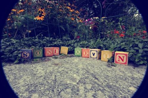 IMG_6700_blog1
