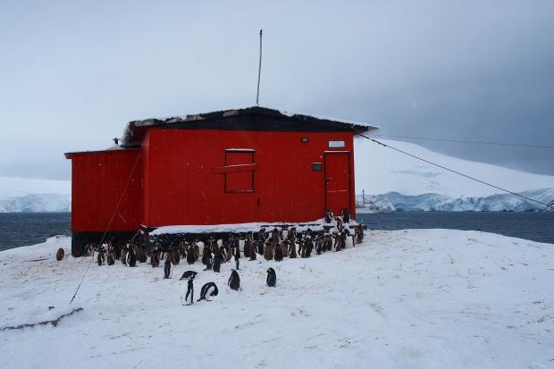Antartica_0755a.jpg