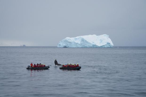 Antartica_0882